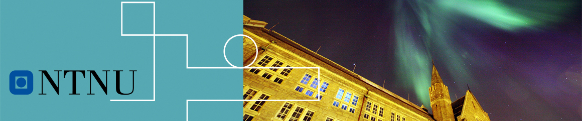 NORWEGIAN UNIVERSITY OF SCIENCE & TECHNOLOGY -NTNU